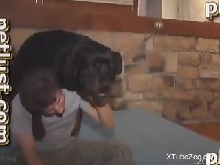 horny zoo porn lover is ready to deep fuck his dog on live cam