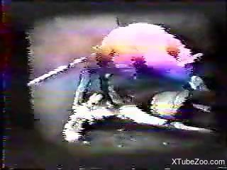 Dog porn zoophilia in scenes of brutal vintage XXX porn