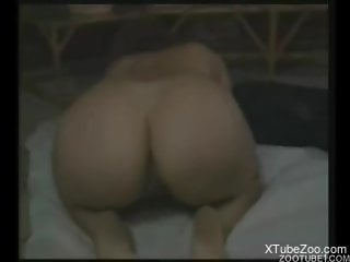 Big ass woman shakes the dog cock in her mouth and pussy