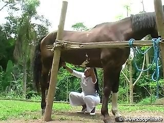 Tanned Latina bends over to get fucked by a kinky horse