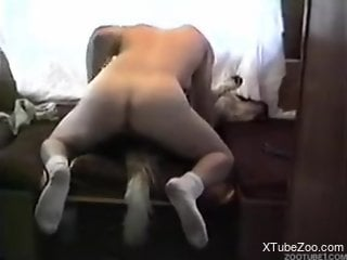 Dude in white socks fucking a very submissive animal
