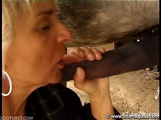 Granny finds a perfect stallion with a huge knob