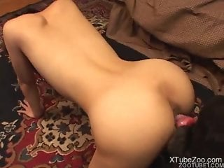 Asian honey feels entire dog dick ramming her wet cherry